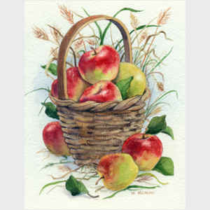 Basket of Apples with Grasses