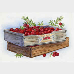 Cranberries by the Crate