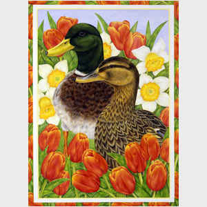 Duck and Tulips