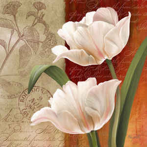 French Tulips I