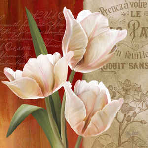 French Tulips II