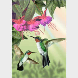 Fuchsia and Hummingbirds - vertical