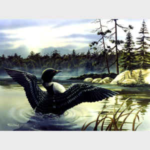 Loon Country