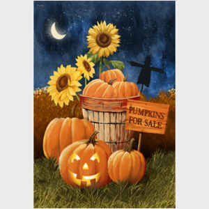Pumpkins for Sale - Night Sky