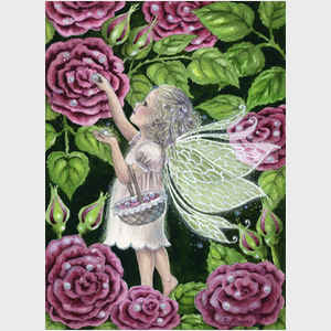 Rose Dew Fairy