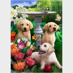 Springtime Puppies