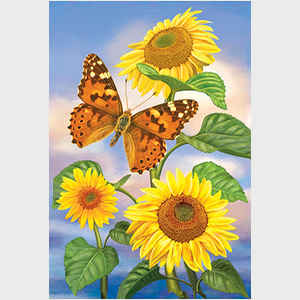 Sunflowers and Painted Lady