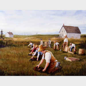 The Cranberry Pickers
